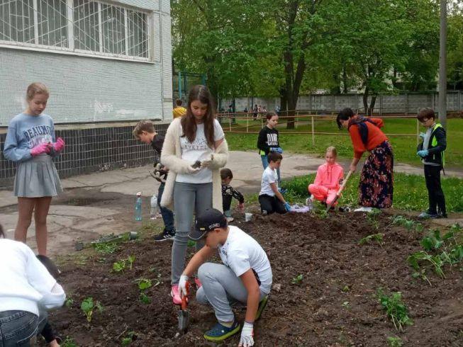 Учні 5-го класу реалізували проєкт з природознавства «Росток»